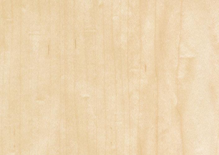 American Maple Veneeredflush Doors